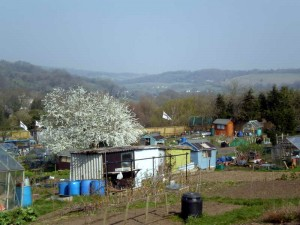 Summer Street allotments overlook the beautiful Stroud valleys